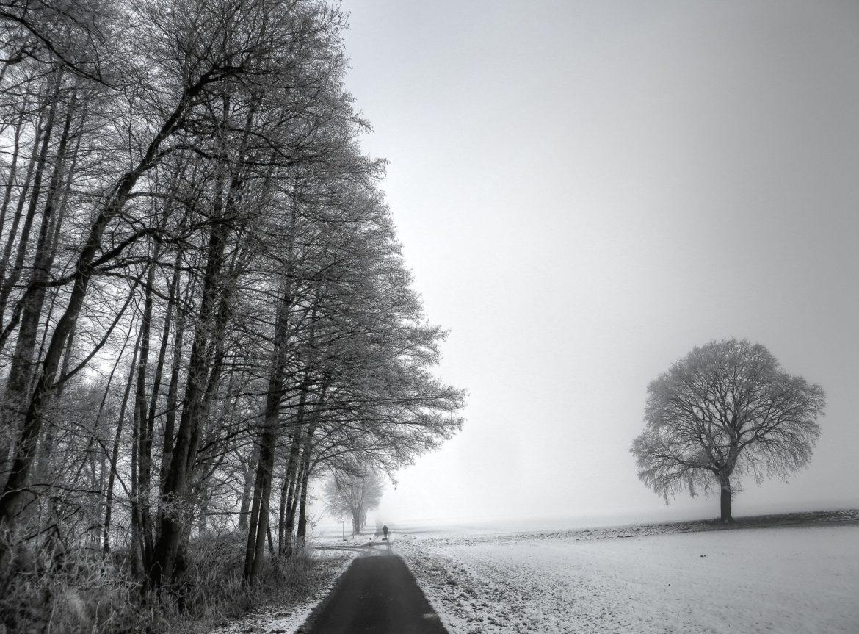 Wintergrau